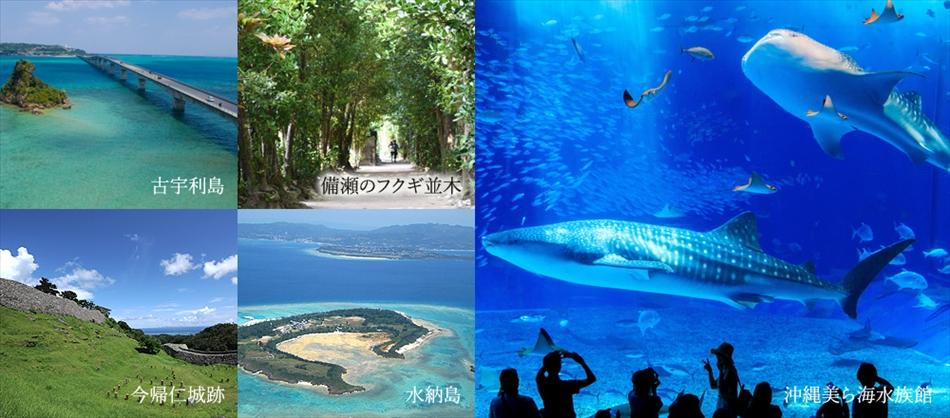 沖縄屈指の人気スポット