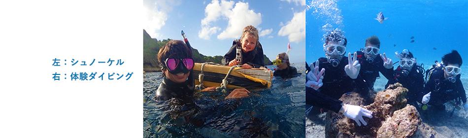 シュノーケルと体験ダイビング