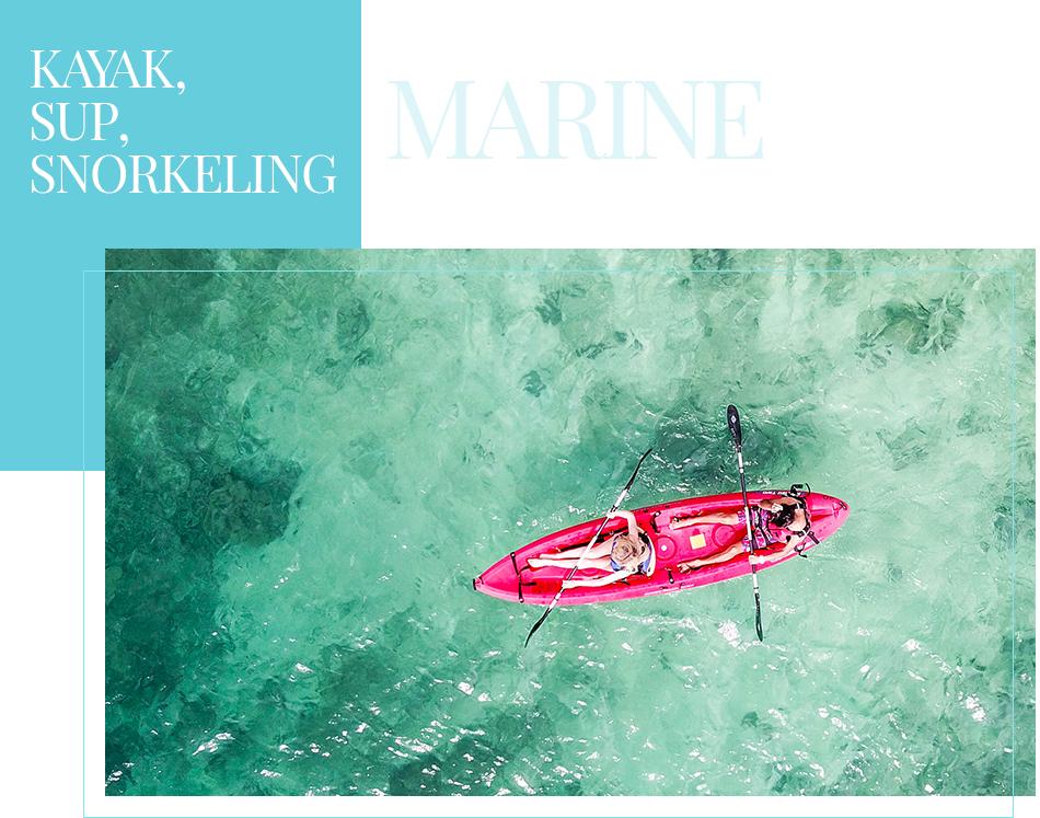 MARINE KAYAK,SUP,SNORKELING