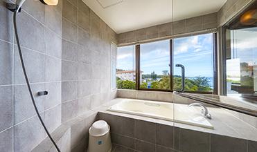 Panacea Twin / View bath