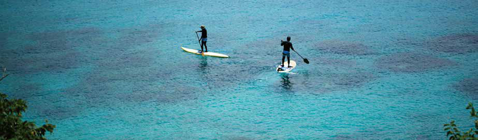STAND UP PADDLE BOARD(SUP)