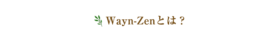 Wayn-Zenとは?